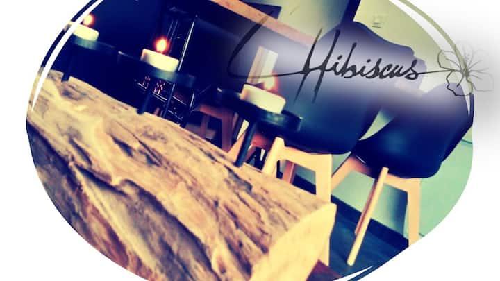 L'Hibiscus: Jacuzzi/Sauna dans Maison 4 personnes