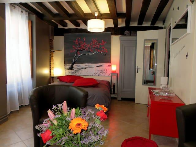 Beau studio Coeur de Ville Chartres - Chartres - Byt