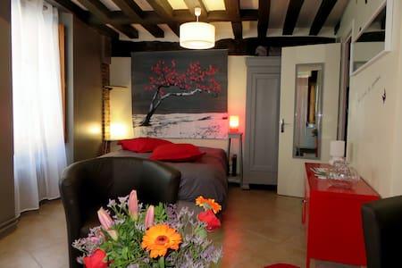 Beau studio Coeur de Ville Chartres - Chartres - Apartamento