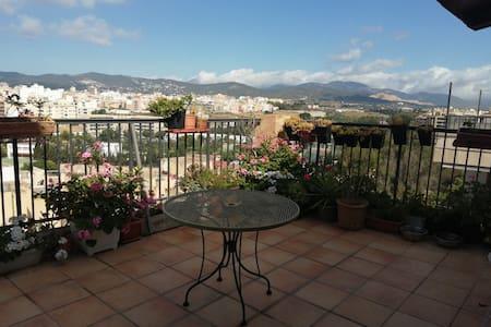 habitación larga estancia en Palma