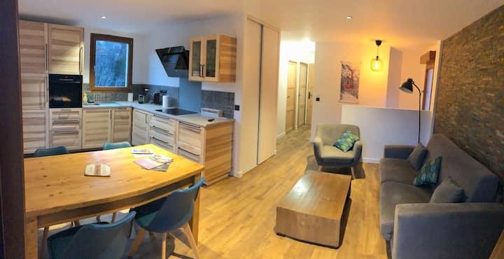 location appartement 55m2  ST Gervais les bains