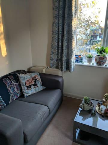 Lovely spacious room near Richmond/ kew gardens