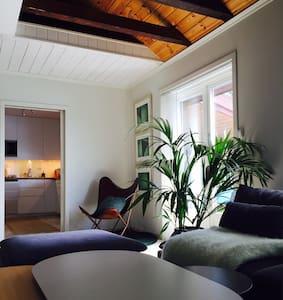 Usjenert,sosial hytte, ved vannet, 50 min fra Oslo - Ringerike - Cabana