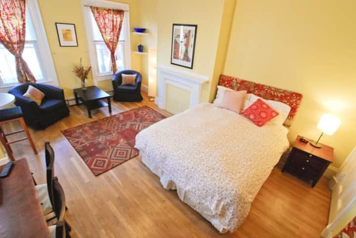 Studio Apartment on Quiet Tranquil Worcester St!