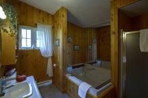 Salle de bain avec une immense baignoire pour 2