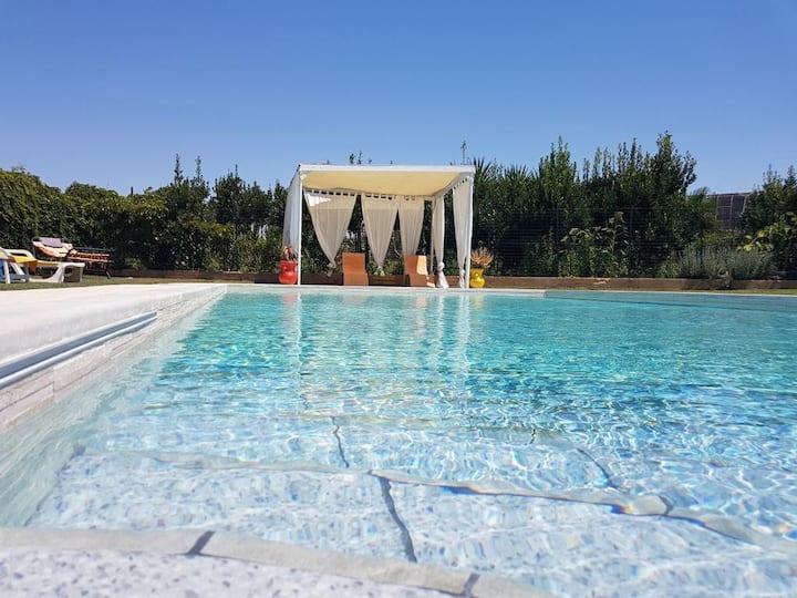 Il giardino dei girasoli, libertà e vacanze