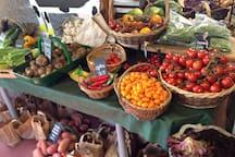 Ardross Farm Shop - 2 mile, walk/cycle/drive...