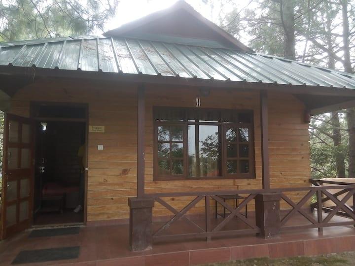 Offbeat| Premium cottage with outdoor activities