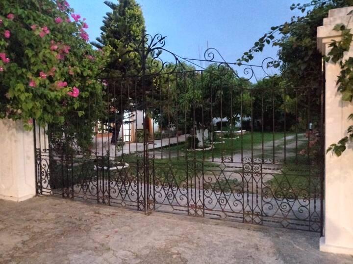 Hacienda Ticimul Allegra