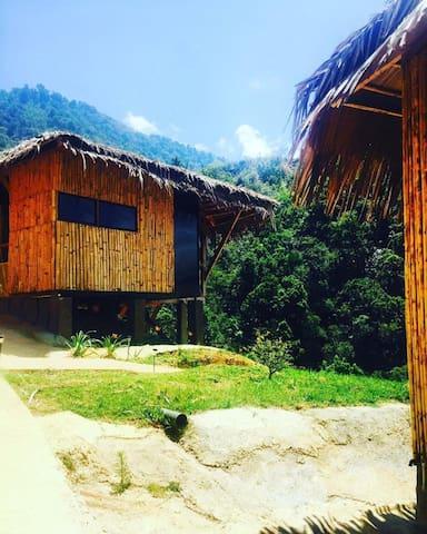 Tami Lodge, Providencia de Dota