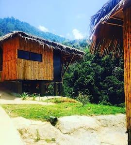 Tami Lodge, Providencia de Dota - San José Province - Szállás a természetben