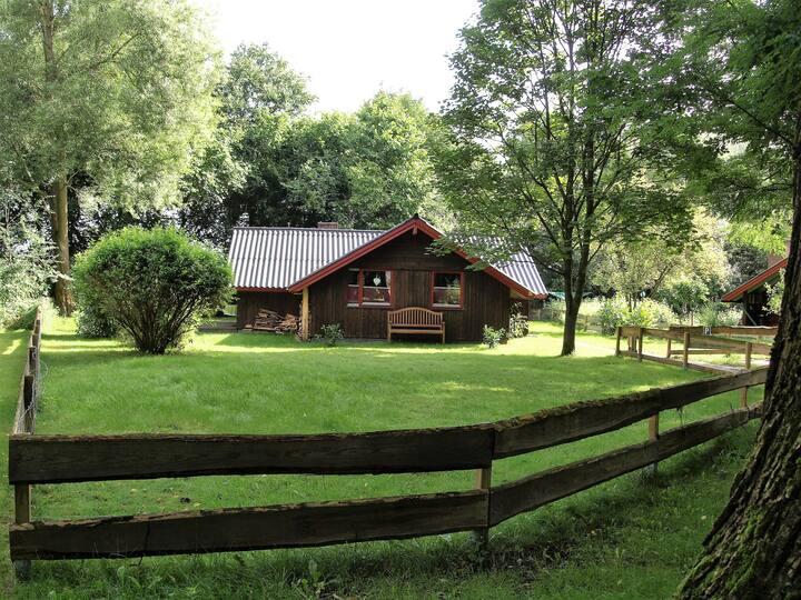 Ferienhaus-Pannier II: Urlaub auch mit Kind + Hund