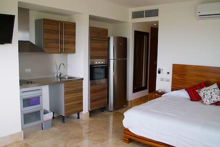 Luxury Penthouse condo. Casa Serenity at La Amada.