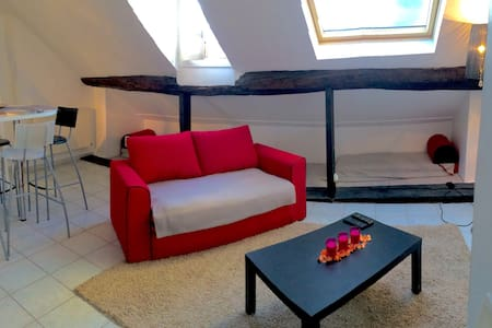 Duplex au coeur de l'Ile Saint-Louis - 巴黎 - 公寓