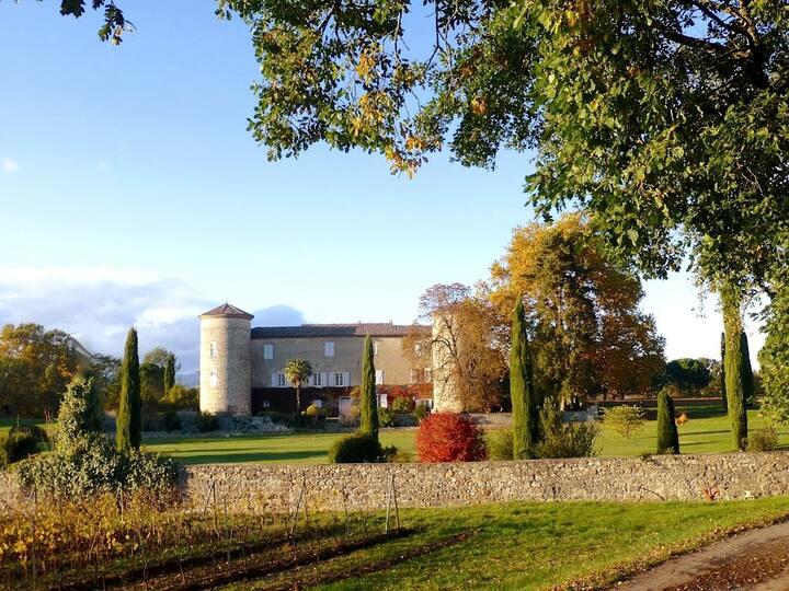 Le Château de la Selve