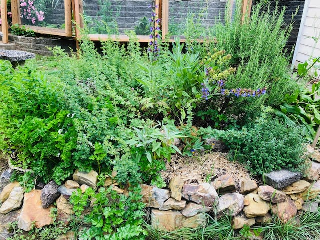 You'll never be short of fresh herbs with our stunning herb spiral just outside the kitchen door