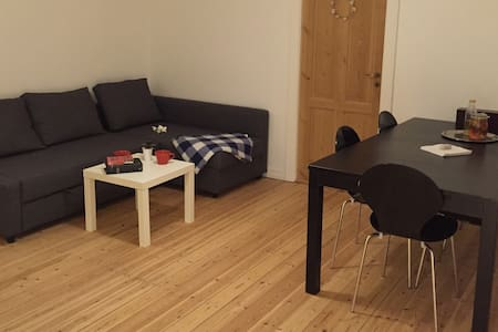 Cozy new apartment in Copenhagen. - Gentofte - Appartement