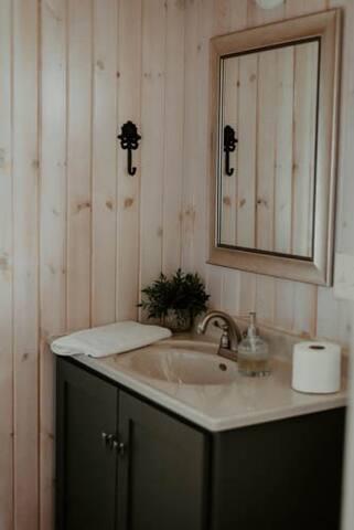 Bathroom vanity ,  regular flush toilet & full size shower not pictured