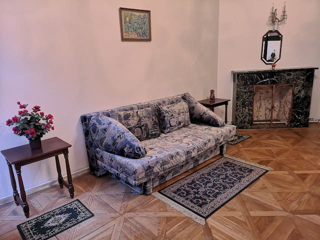 2 rooms in center of Prague 1