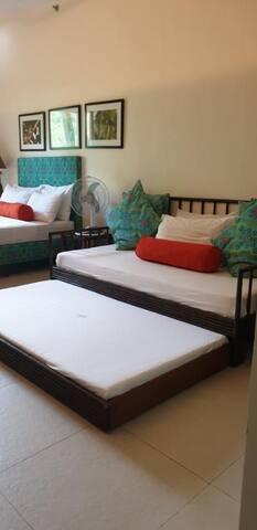 1 bedroom penthouse unit pico de loro