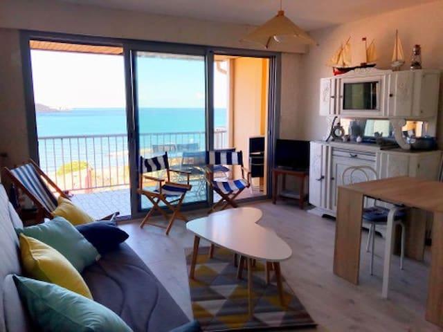 Banyuls/Mer, Appt T2 50m2, terrasse, vue sur mer