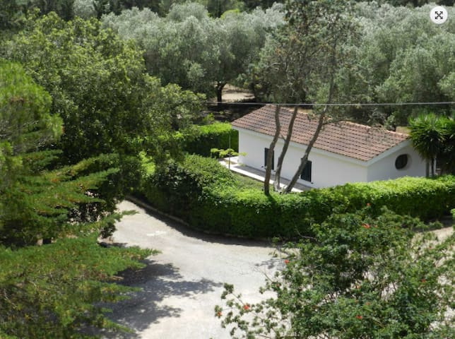 Cottage in the olive orchards 5min from Ionian sea