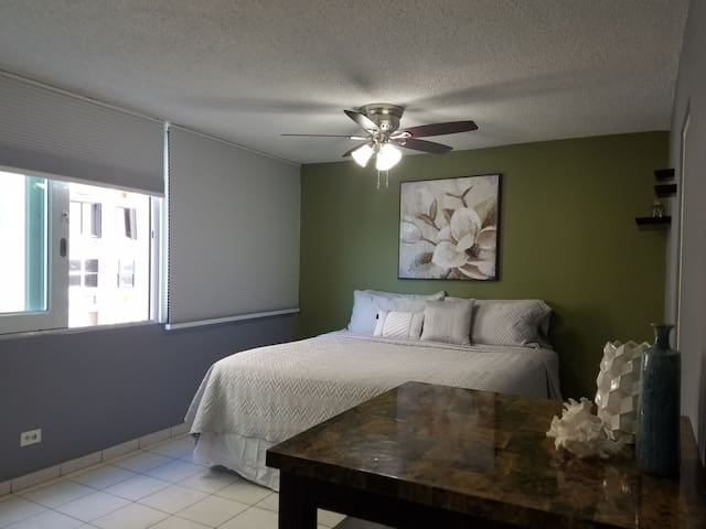 Cozy beach front apt. in Isla Verde near airport!
