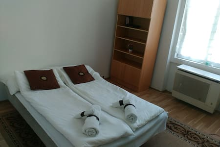 CENTRAL LOCATION, SALE FOR  WHOLE APRIL! $25/NIGHT - Budapest