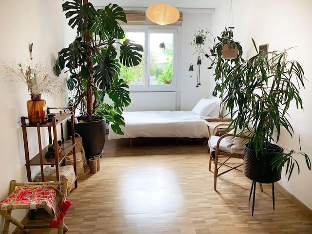 Privatzimmer, gemütlich, private Dusche/WC