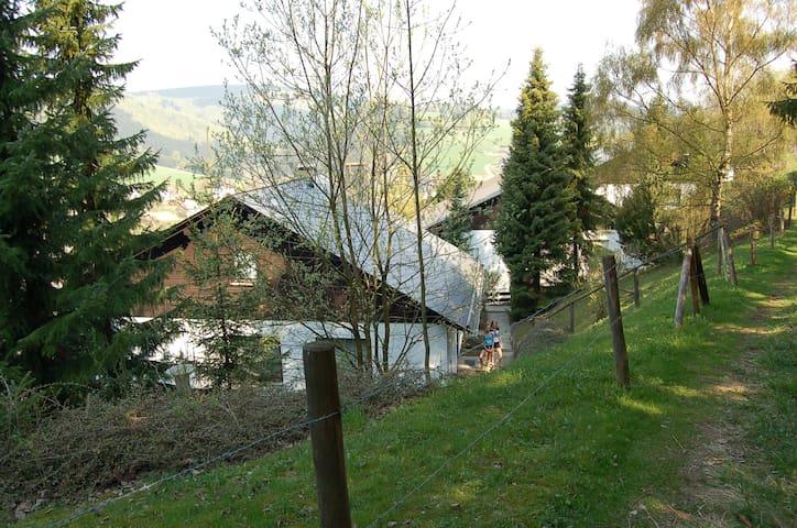 "Comfortabel Haus ""Bergzicht"" - Willingen (Upland) - Wohnung"
