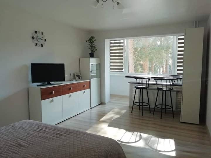 Light one room apartment