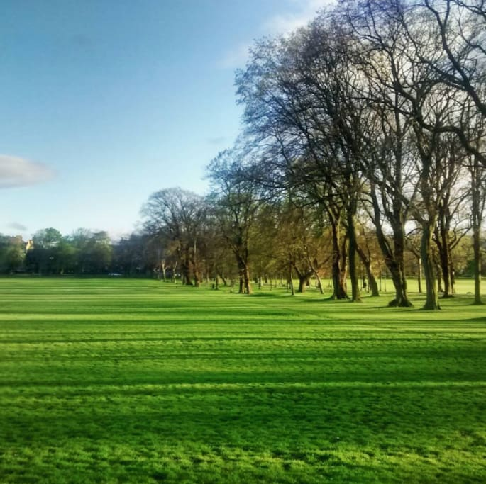 Just a couple of minutes from the Meadows, perfect for walks, picnics and football