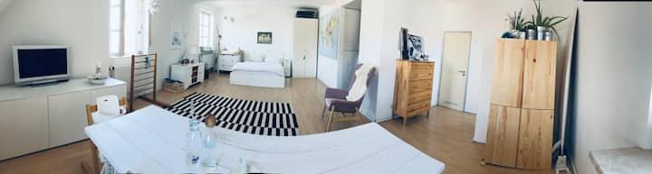 1 Zimmer Apartment mit Blick auf Basilika (Altbau)