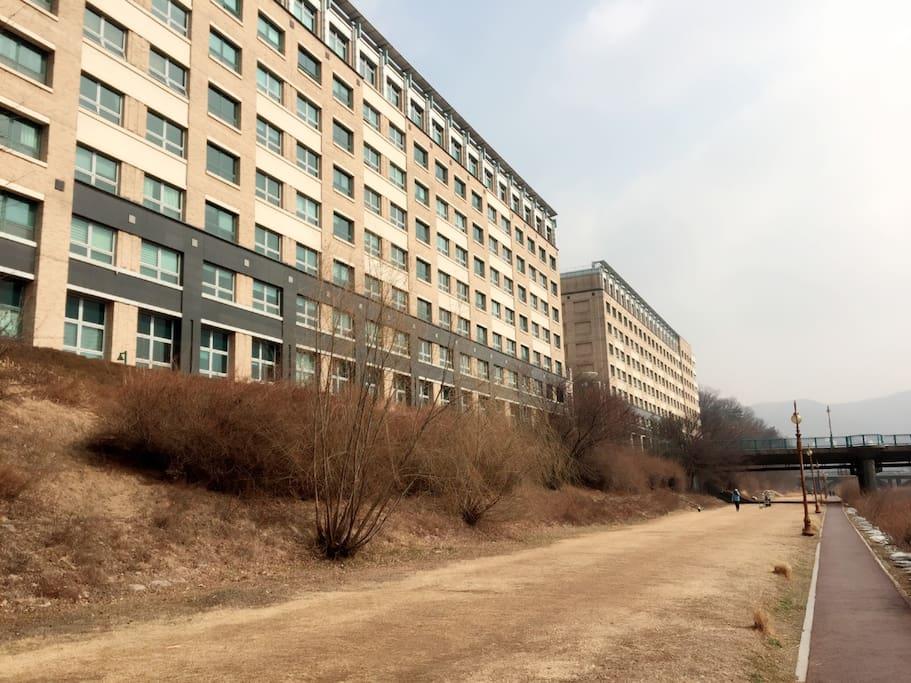 건물 주면 탄천 공원