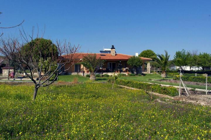 Özbek çiftlikevi - Urla - Villa