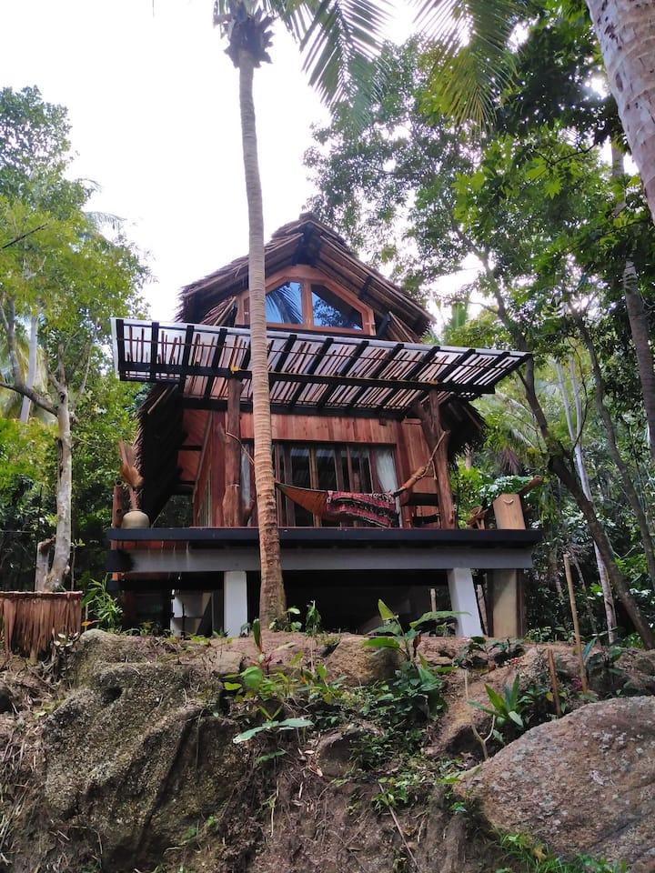 Loft House Thong Nai Pan Jungle view