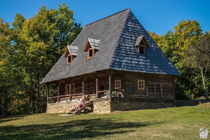 Casa Valea Vinului-traditional house in Maramureș