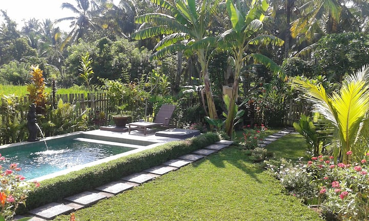 Buddhahome Stay in the rice fields-close to town-4