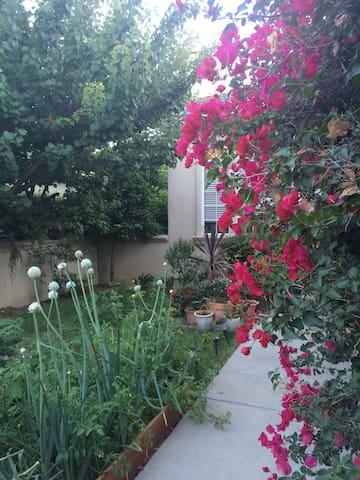 Room in a executive villa near Stanford/Palo Alto