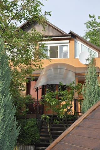House for rent Kiev, UEFA Champions League