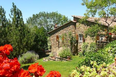 Selvabella in Chianti B&B Il Riccio - Greve in Chianti - Szoba reggelivel