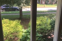 fully landscaped front yard