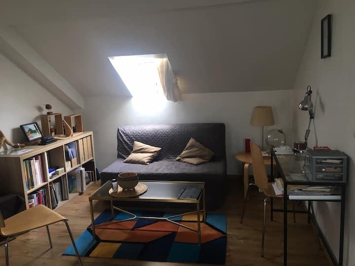 Bel appartement cosy et lumineux sous les toits