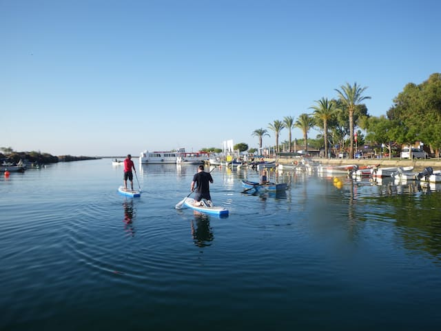 Early morning Paddleboard in Fuseta