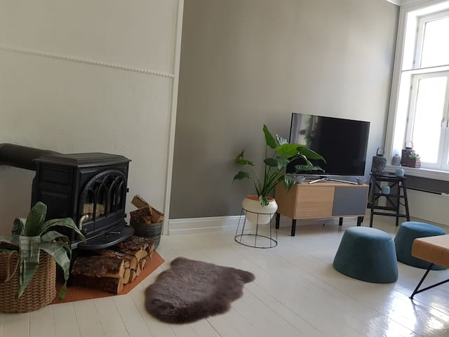 Cosy and chic apartment  in cool Grunerløkka!
