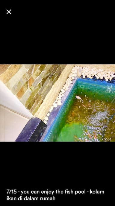 You can enjoy the fish pool- kolam ikan dalam rumah