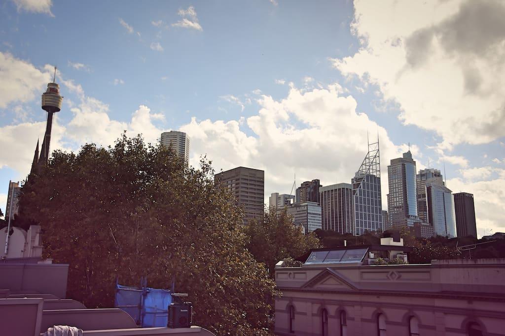 Beautiful view of Sydney CBD.