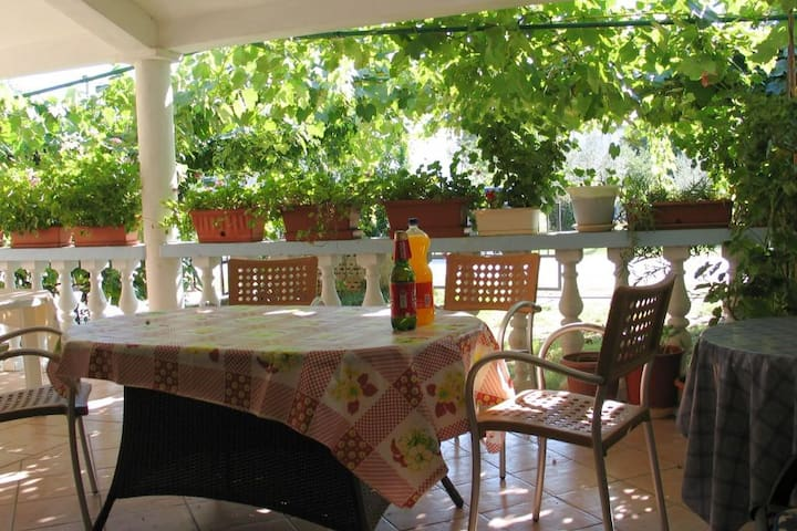One bedroom apartment with balcony Valbandon (Fažana) (A-7355-b)
