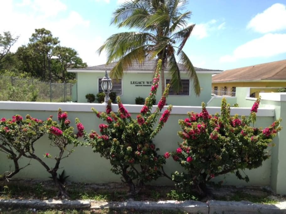 Sand Dollar Apartment Best Location Apartments For Rent In Nassau New Providence Bahamas