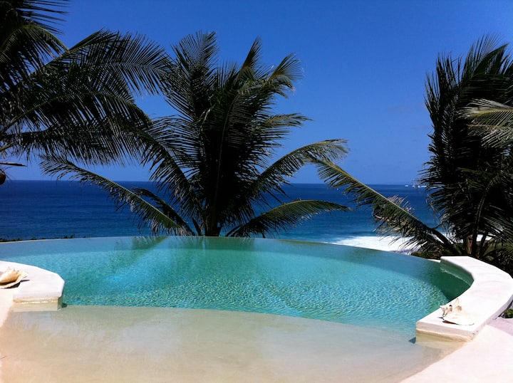 Wild Paradise